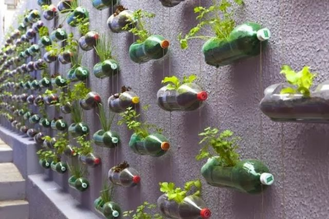 How to Recycle Plastic Bottles to Make Our Planet Greener (5 Pics)recycled plastic bottle, life hacks, plastic bottle
