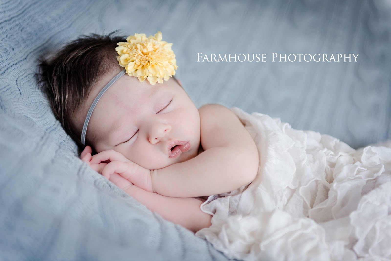 This newborn photography session was taken at my new studio baby noelle was a precious 15 days new what a wonderful family to work with