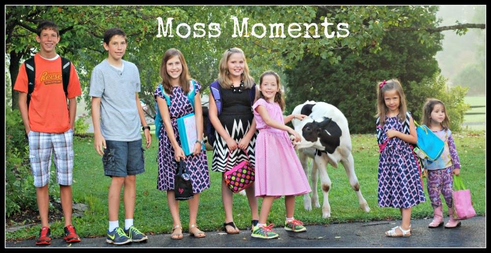 Moss Moments