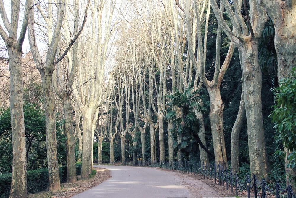 Paseo por los Jardines del Campo del Moro, muy cerquita de La Colazione