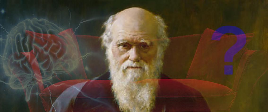 LE DIVAN DE DARWIN