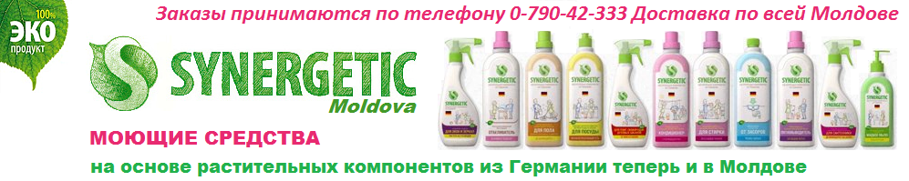 Synergetic Moldova