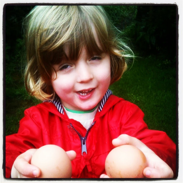 Little D shows the importance of eggs shells as a lime substitute.