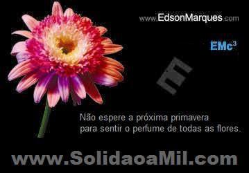 SOLIDÃO A MIL