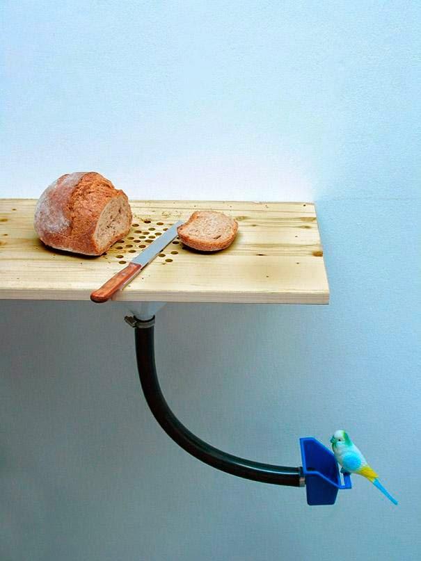 taboa para cortar pães e alimentar os pássaros