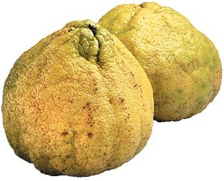 green fruits ugli fruit