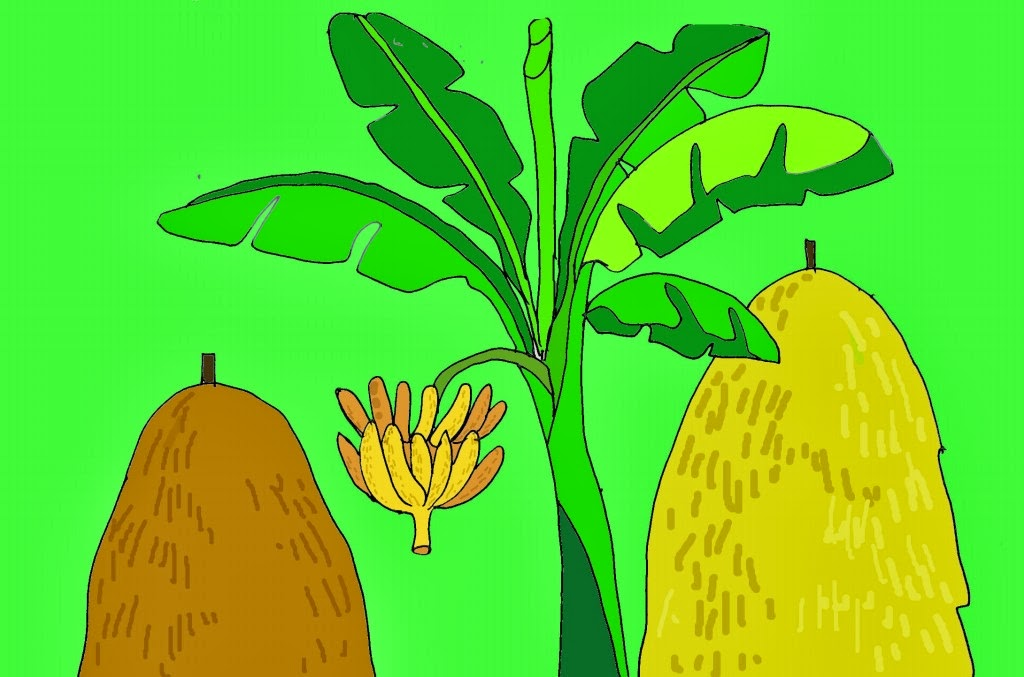 cây chuối
