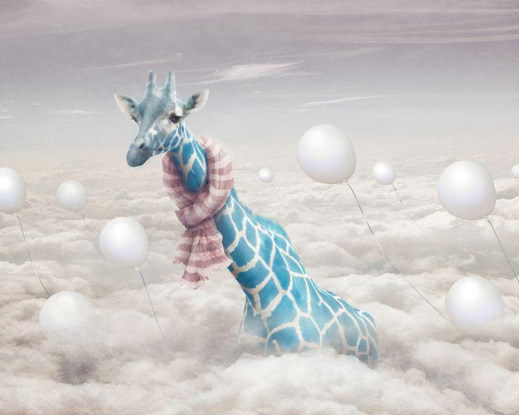 http://2.bp.blogspot.com/-ImAsGcxPMBY/TmqPVXybu7I/AAAAAAAAK5A/6Lqc9L_ZDoQ/s1600/giraffe.jpg