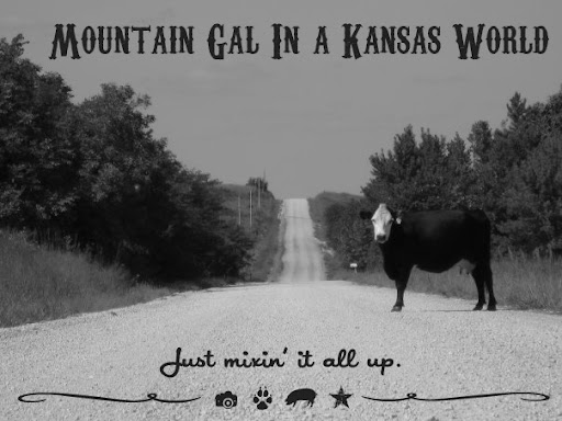 Mountain Gal In A Kansas World