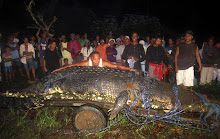 Image of Lolong and the villagers of Bunawan