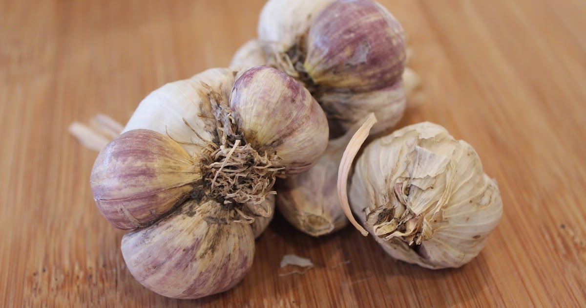 how to grow my own garlic