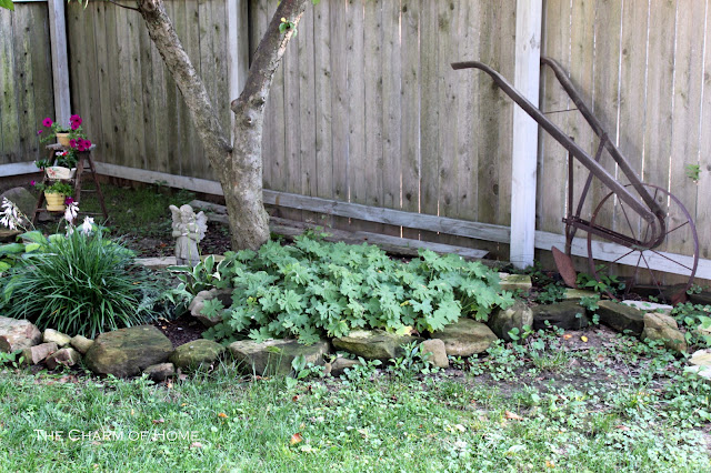my back garden is small and could use some more greenery but we have