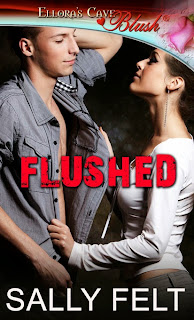 "Cover of ""Flushed"" a sexy romantic comedy by Sally Felt."