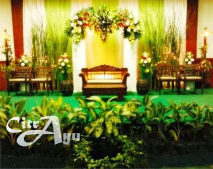 Citra ayu wedding harga belum termasuk panggung dan pejor janur junglespirit Image collections