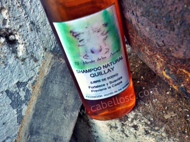 Este shampoo en especifico dice que es para prevenir y tratar la caspa. Por otro lado, también sirve para suavizar y fortalecer el cabello.