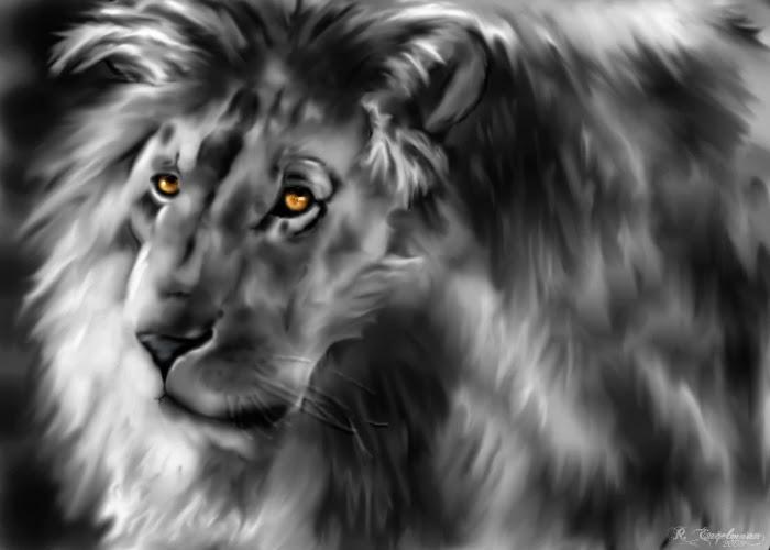 """David's Lion"""