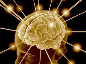 Bases Biolgicas de la Psicologa