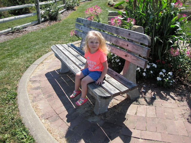 Stella on a Bench