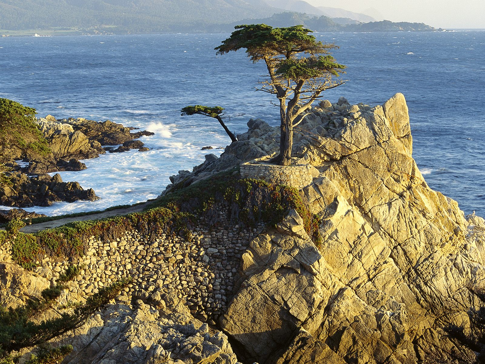 http://2.bp.blogspot.com/-IoQPxG6n7w0/TisZDm3q4HI/AAAAAAAAA2E/KRUJHhL41rc/s1600/World_USA_Lono_Cypress___Pebble_Beach___California___USA_008934_.jpg
