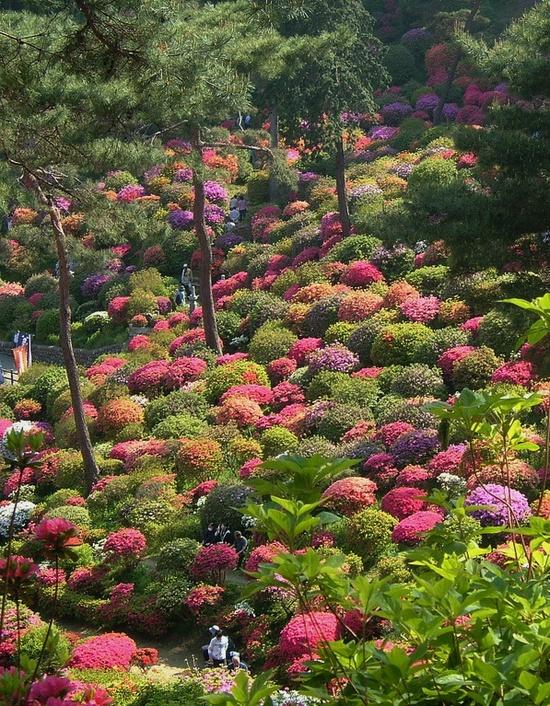 Shiofune Kannon Gardens in Ōme, near Tokyo