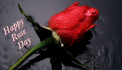 happy-rose-day-happy-valentines-day-wishes-wallpaper-greeting