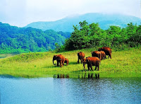 Kerala - Best south India tour packages