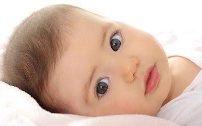 Las etapas del desarrollo del bebé