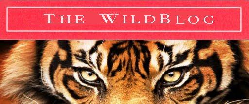 WildBlog