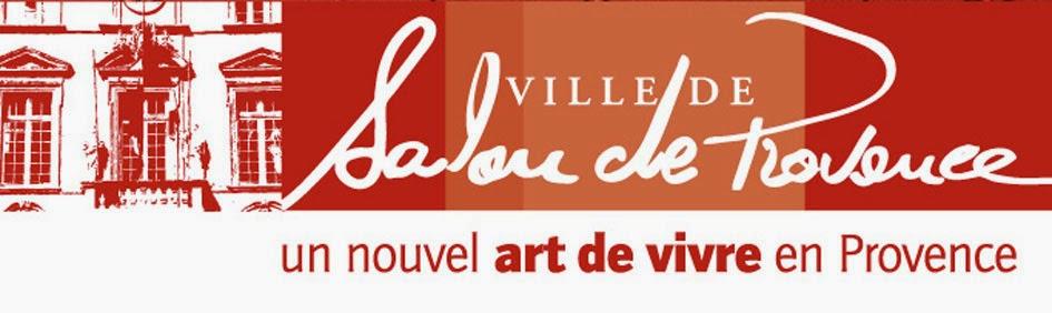 Festival d 39 art 39 ronautique les partenaires for Bibliotheque salon de provence