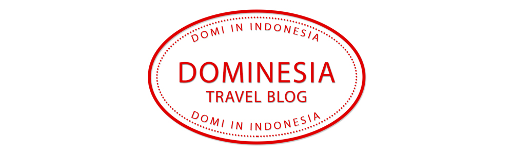 Dominesia