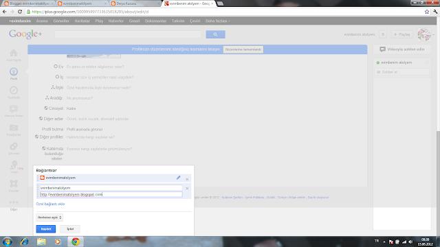 profil blog sorunu çözümü