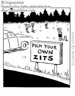 pick your own zits