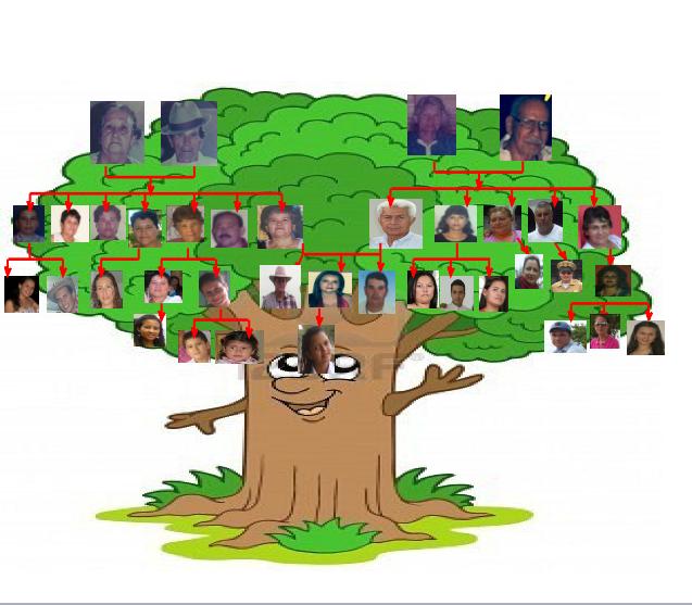 que es un arbol genealogico