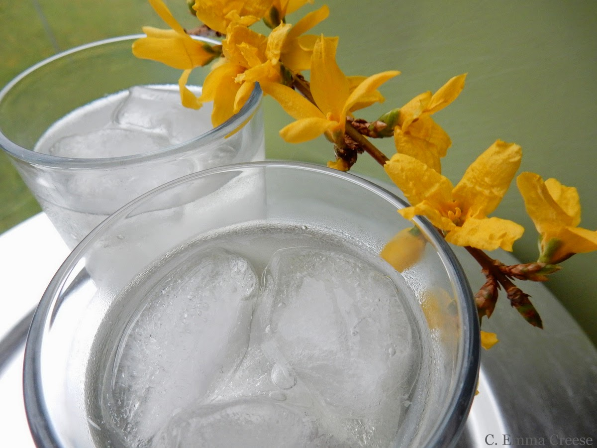 Infuse your own Gin - Kitchen Provisions