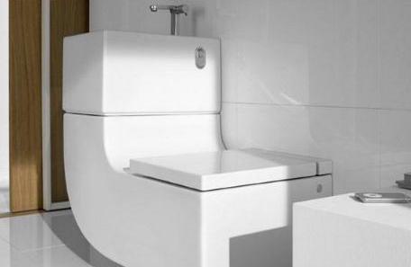 Unique Water Closet for Bathrooms or Toilets Z Set