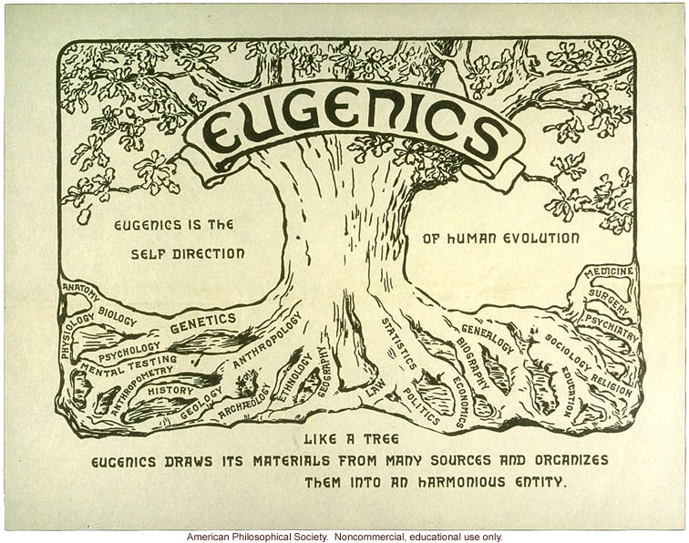 Morbid Anatomy Annals Of Eugenics Journal 1925 1954 Now Available