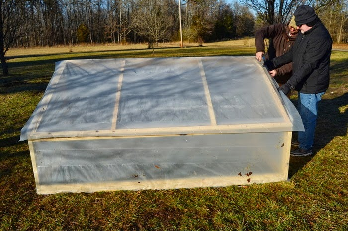 DIY Greenhouse with Blueprint, shared by Homesteading on Grace