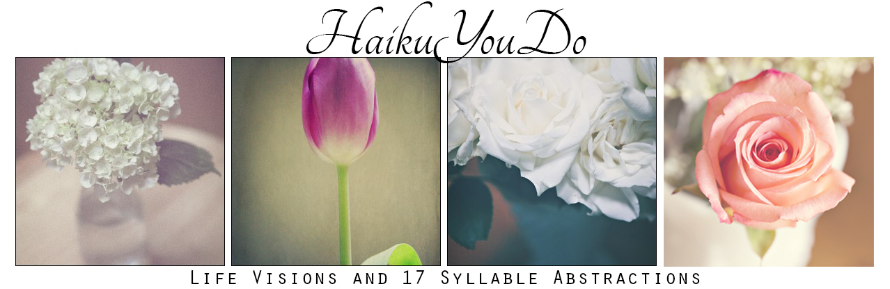 Haiku.You.Do