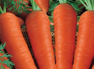 Makanan Pencegah Munculnya Jerawat