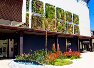Fachada cubierta por plantas
