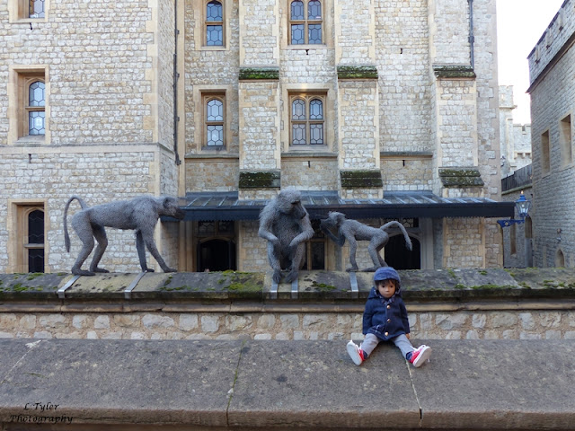 http://holidayswithhenry.blogspot.co.uk/2016/01/a-day-out-in-london-tower-of-london.html