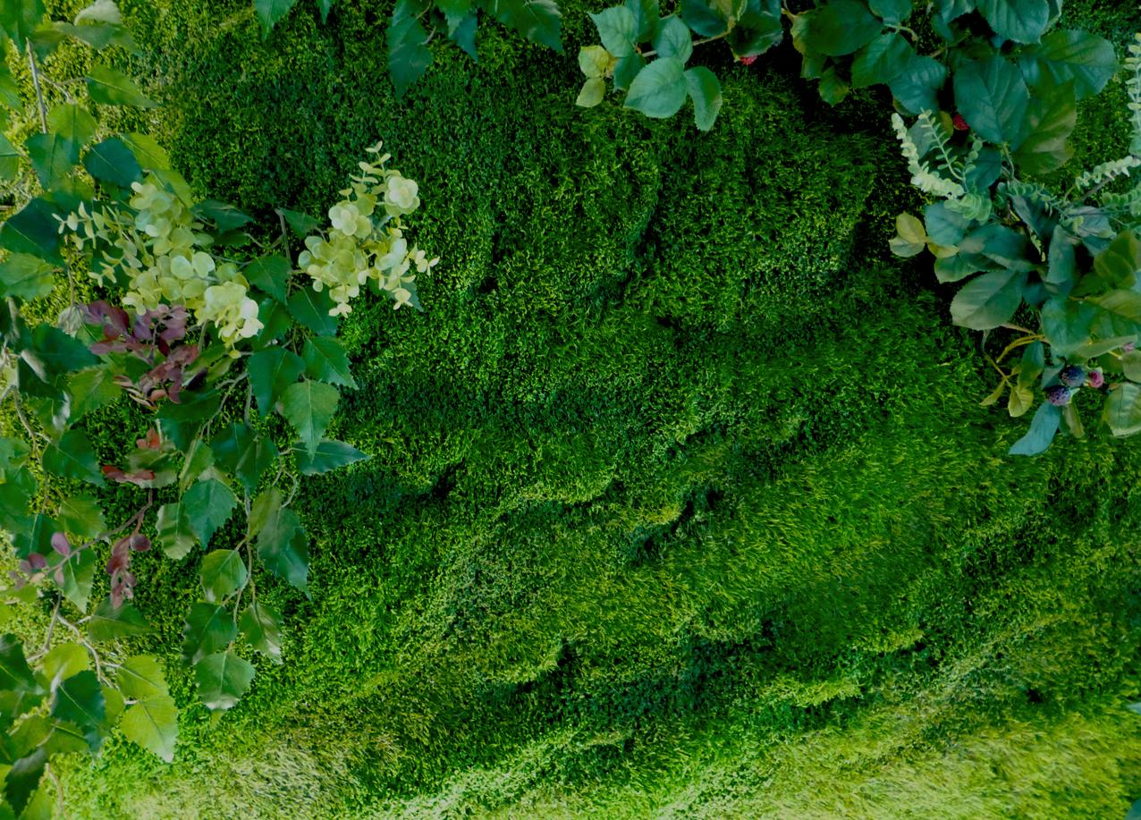 Cuaderno de campo y taller jardines verticales tipos y for Muros de plantas verticales