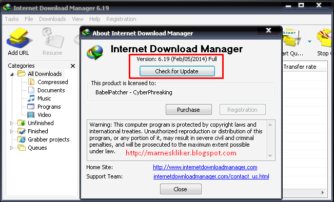 10 Ways To Download Torrents With IDM
