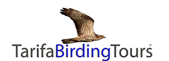 Tarifa Birding Tours