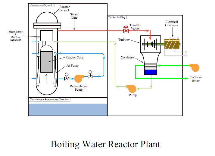 Nuclear power plants understanding boiling water reactor systems at water goes through the reactor is heated by the splitting of uranium atoms turns to steam and spins a turbine generator to make ccuart Choice Image