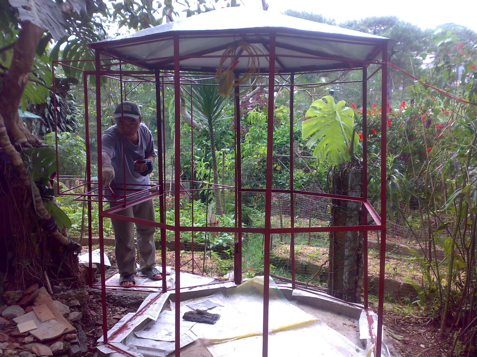 making the outdoor aviary