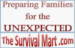 The Survival Mart