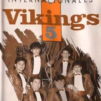 vikings 5 INTERNACIONALES