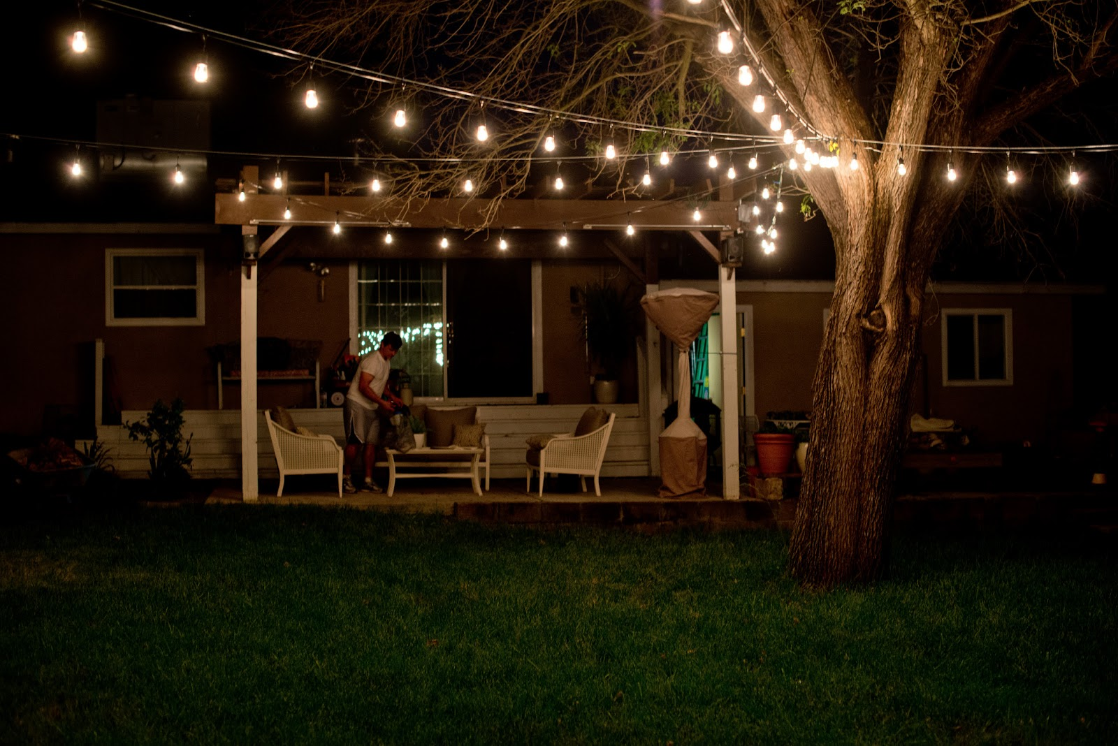 Backyard String Lights And Flowers - Home Design Elements
