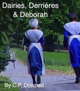 Amish, mennonite, romance love story with sexual tension book novel